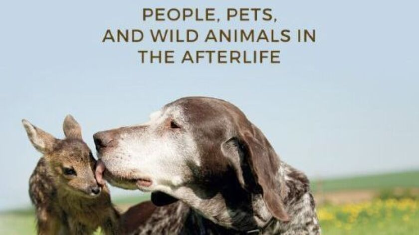 Ramona author's seventh book explores what people, pets and wild animals will experience in heaven.