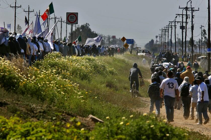 Farmworker protest in Baja California