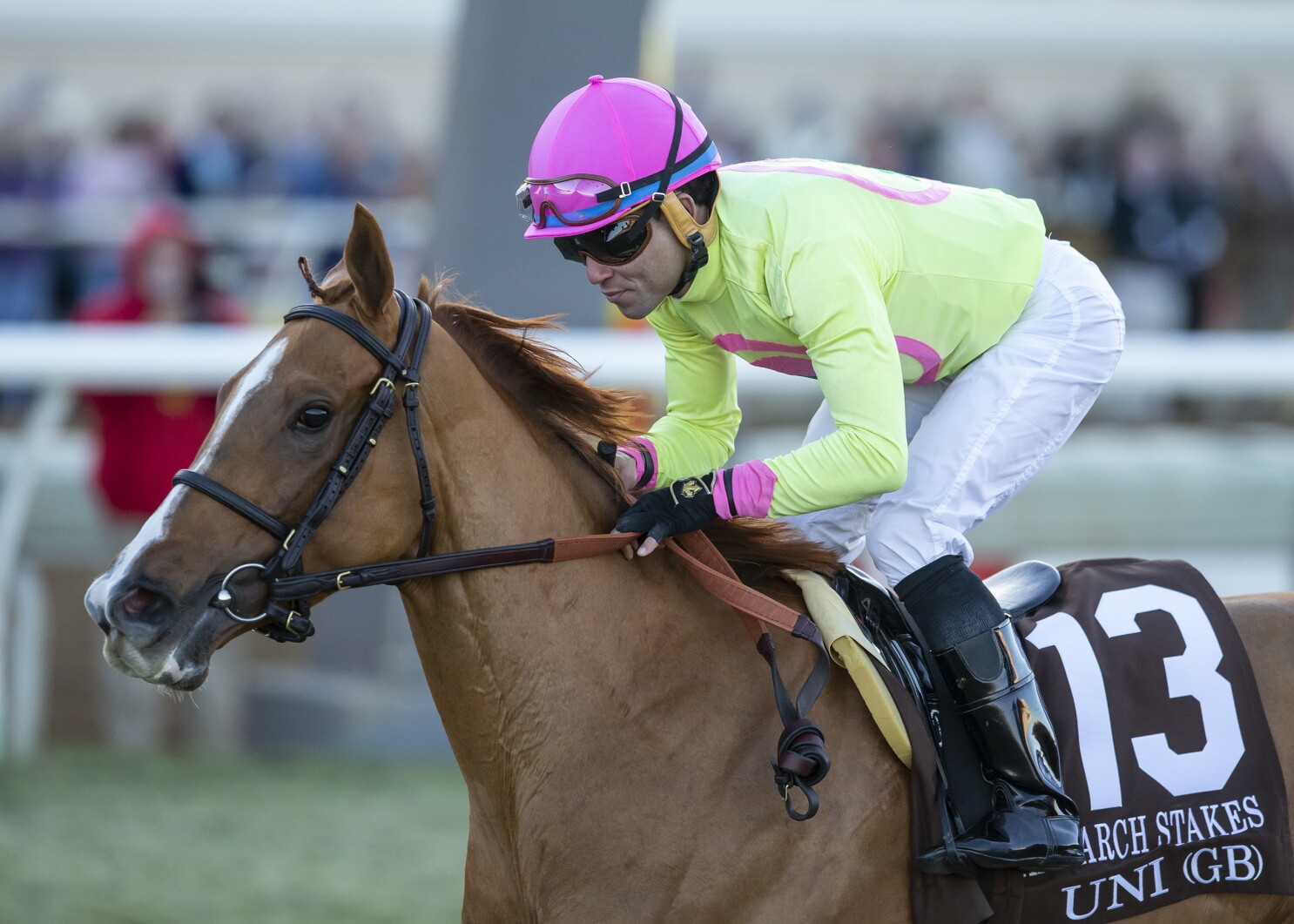 Del Mar faces scrutiny for racing meet after Breeders' Cup death