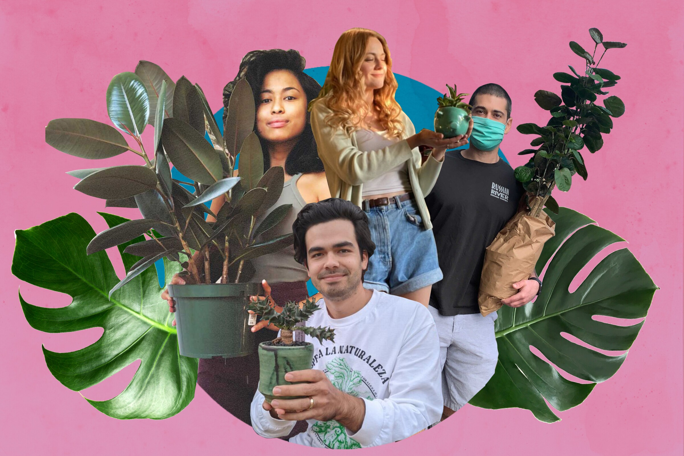 A collage of people showing their plants