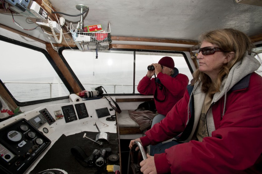 Nancy Black, right, navigates the Sea Wolf II while Tony Lorenz watches for whales.
