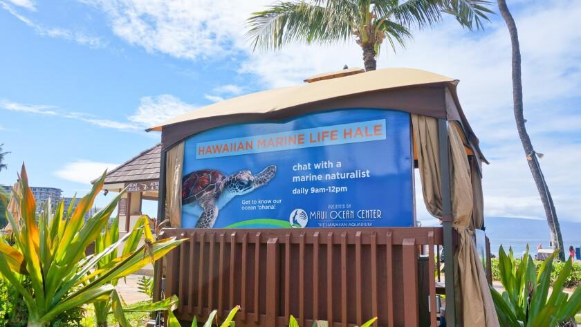 Hawaiian Marine Life Hale