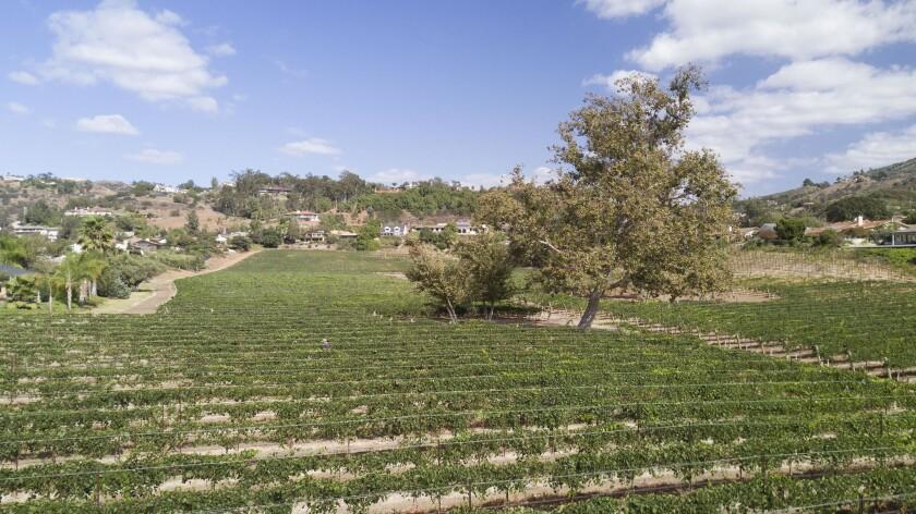 Fallbrook Winery