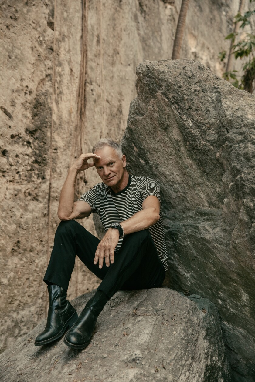 Sting sitting on a large rock.