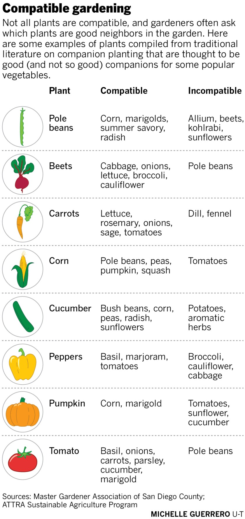 compatible gardening infographic