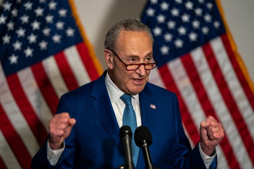 Senate Majority Leader Charles E. Schumer, in blue suit and tie, gestures before microphones