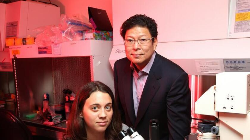 Dr. Jerold Chun, has found that brain cells in people with Alzheimer's disease have different DNA compositions. Here he stands next to Gwen Kaeser, a graduate student and co-first author of a new study on this discovery.