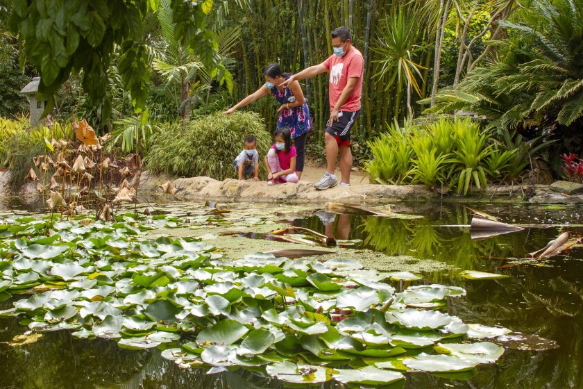 The San Diego Botanic Garden will reopen children's areas with additional safety measures.