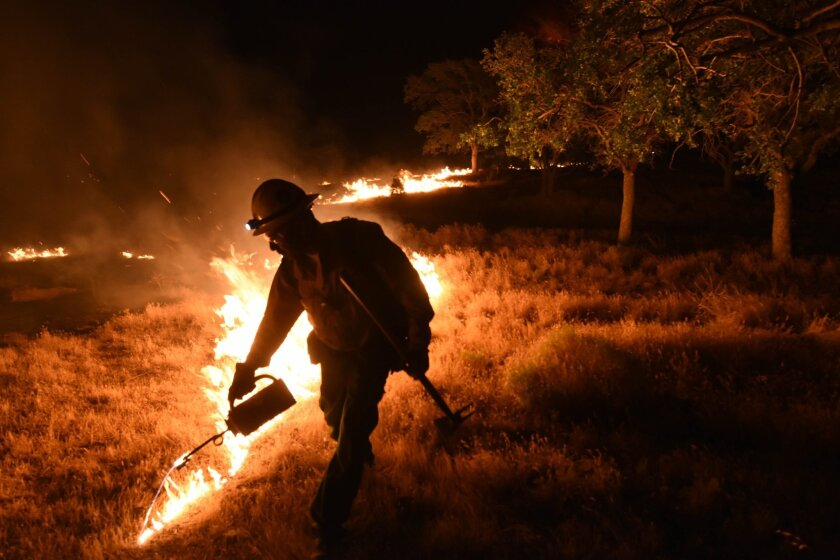 A Kern County firefighter sets a backfire by a wildfire burning near Lake Isabella, Calif. on Friday, June 24, 2016.  Dozens of homes burned to the ground as a wildfire raged over ridges and tore through rural communities in central California, authorities said. (Ryan Babroff via AP)  ONE TIME USE