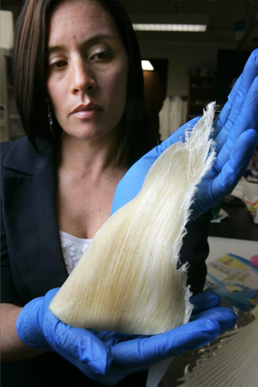 Scripps Institution of Oceanography graduate student Dominque Cano-Stocco holds the dorsal fin of a silky shark she bought at a market in Monterey Park in L.A. County. Her research could play into the debate over a bill to ban the purchase of shark fins in California.