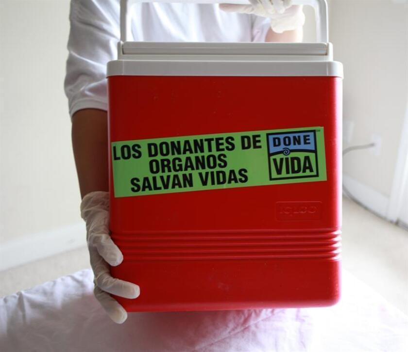 Fotografía de una enfermera sosteniendo una caja de transporte de órganos. EFE/Archivo