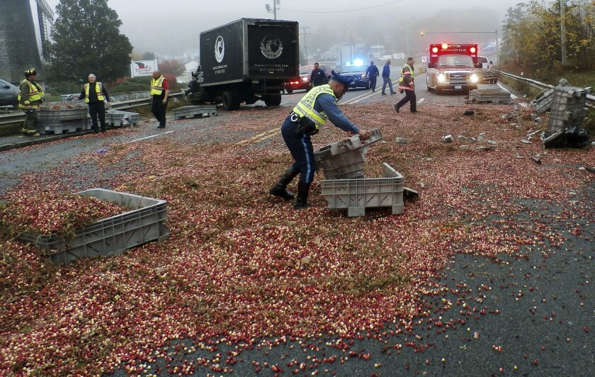 In this photo released by the Bourne Police Department, police and fire officials work to gather cranberries after a head-on crash involving a truck carrying cranberries and another vehicle shut down Route 6 to Cape Cod over the Sagamore Bridge Friday, Nov. 6, 2015, in Sagamore, Mass. (Sgt. Wallace