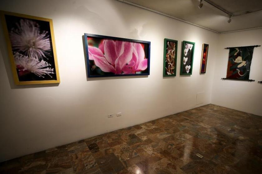 """General view of the """"Magica Naturaleza"""" art exhibition in Quito on Aug. 6, 2019, an exhibit focusing on humans' links with the environment, which will be on public display at the Culture Ministry from Aug. 7-30, 2019. EFE/Jose Jacome"""