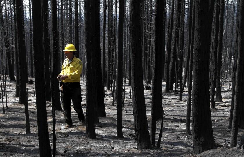Soil Scientist Todd J. Ellsworth of US Forest Service