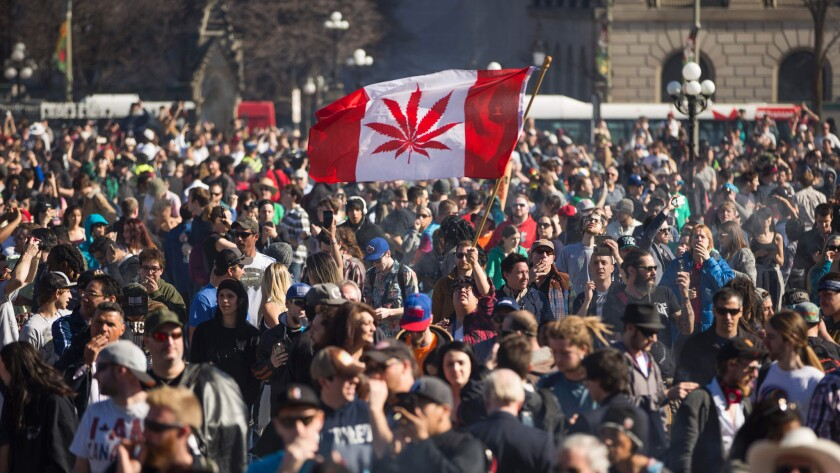 A rally marks National Marijuana Day on Parliament Hill in Ottawa on April 20.