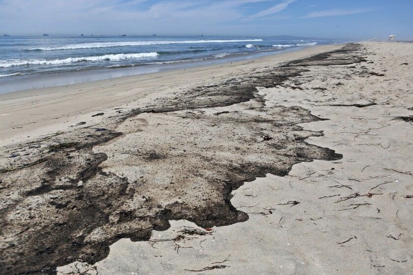 Crude oil covers the sand as low tide recedes at Huntington State Beach on Oct. 3.