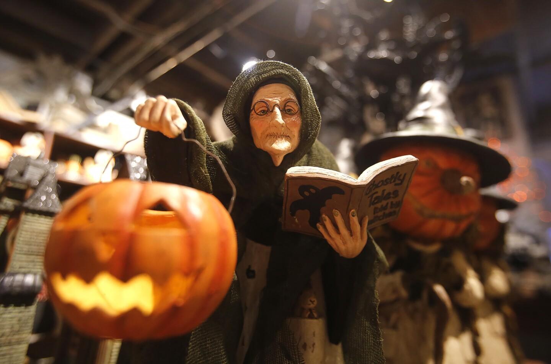 tn-roger-s-gardens-hocus-pocus-halloween-opens-001