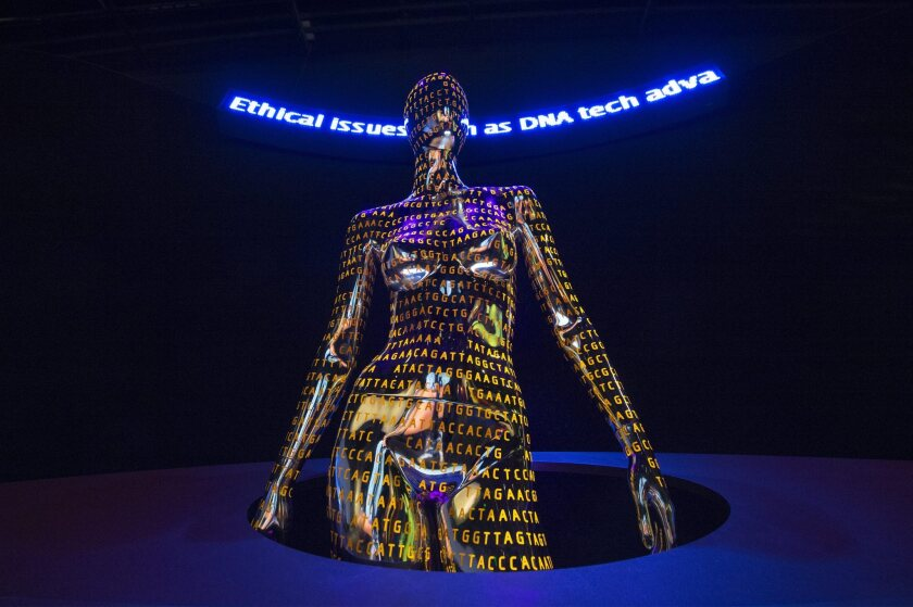 A display at the Smithsonian's National Museum of Natural History in Washington celebrates the Human Genome Project with a depiction of the DNA code.