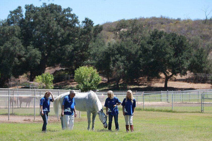 The Toby Wells foundation, created by Wells' family after his death in 2000, supports Blue Apple Ranch in Ramona where the activities revolve around the horses on the ranch and programs for at-risk youth.