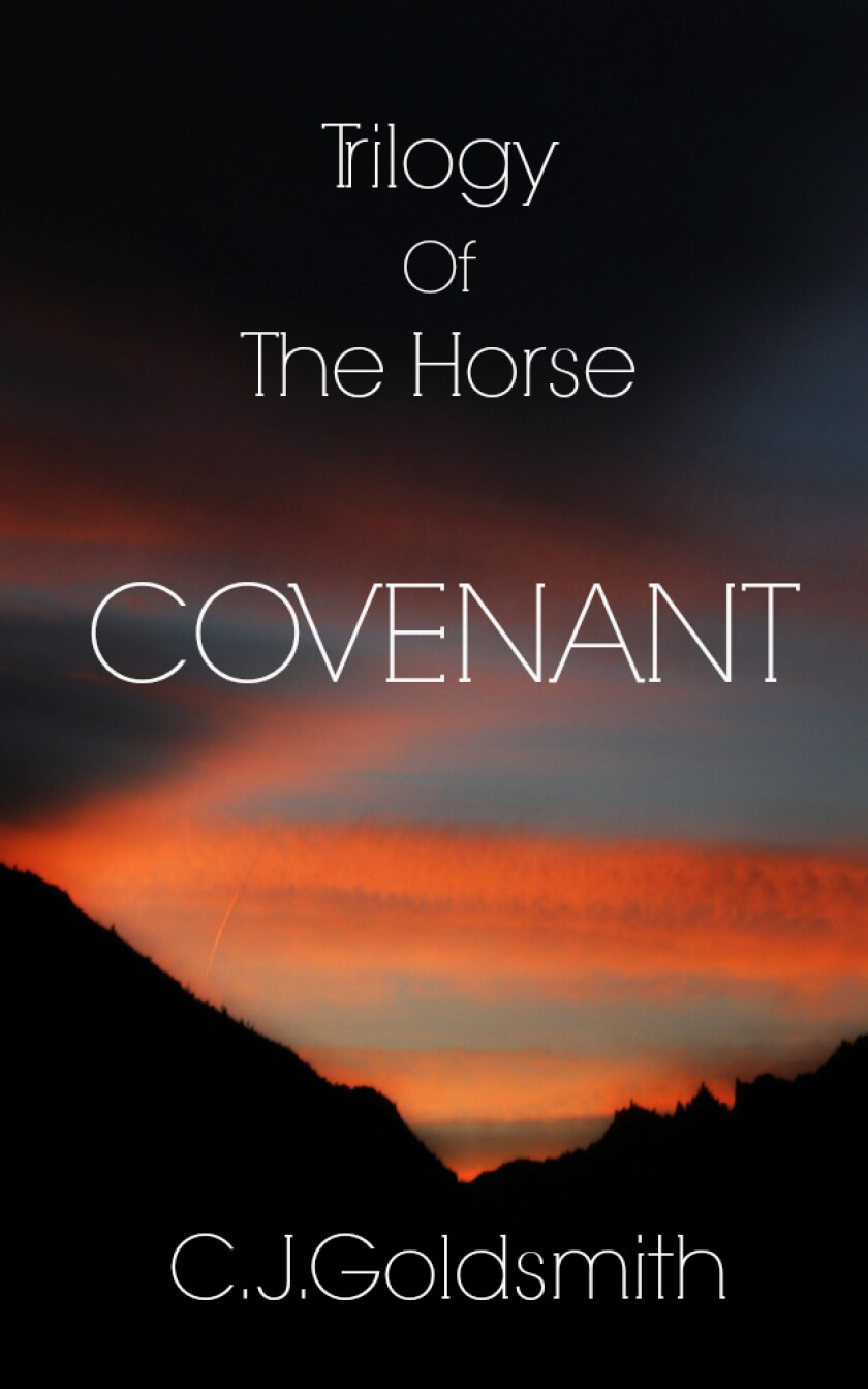 'Covenant' is the first of three books by local author Colleen Goldsmith.