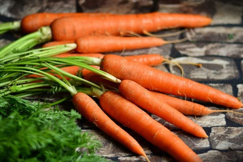 Kuroda carrots, available as seeds from San Diego Seed Company.