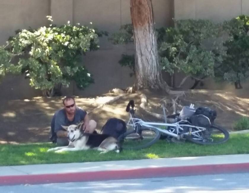 A homeless individual and his dog sit in the shade in La Mesa in this file photo.