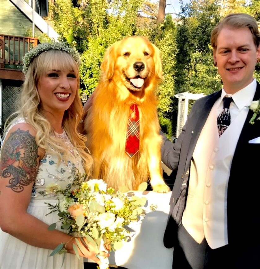 Mayor Max at wedding.jpg