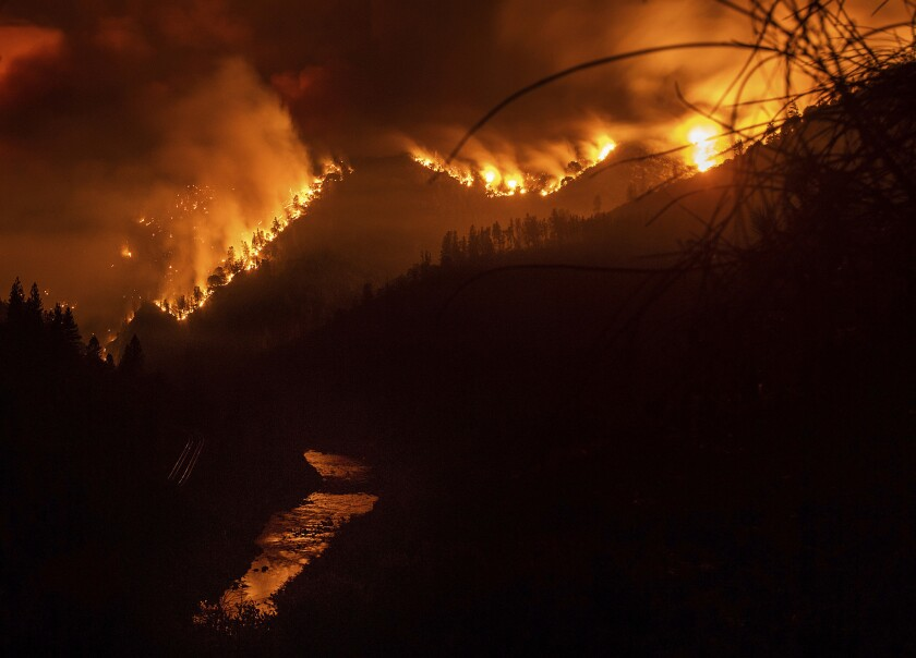 The Delta Fire burned in the Shasta-Trinity National Forest in early September.