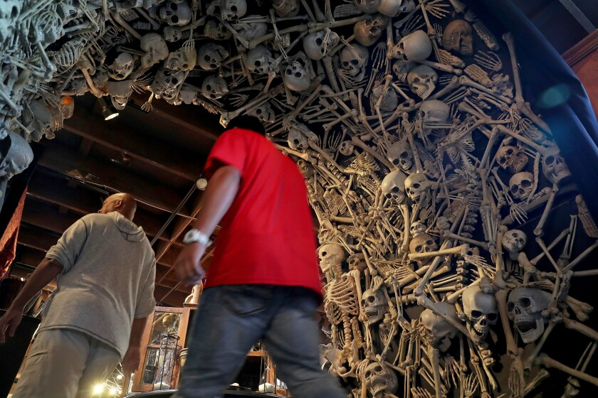 Shoppers walk under an archway lined with faux human skeletons Thursday at Roger's Gardens in Corona del Mar.