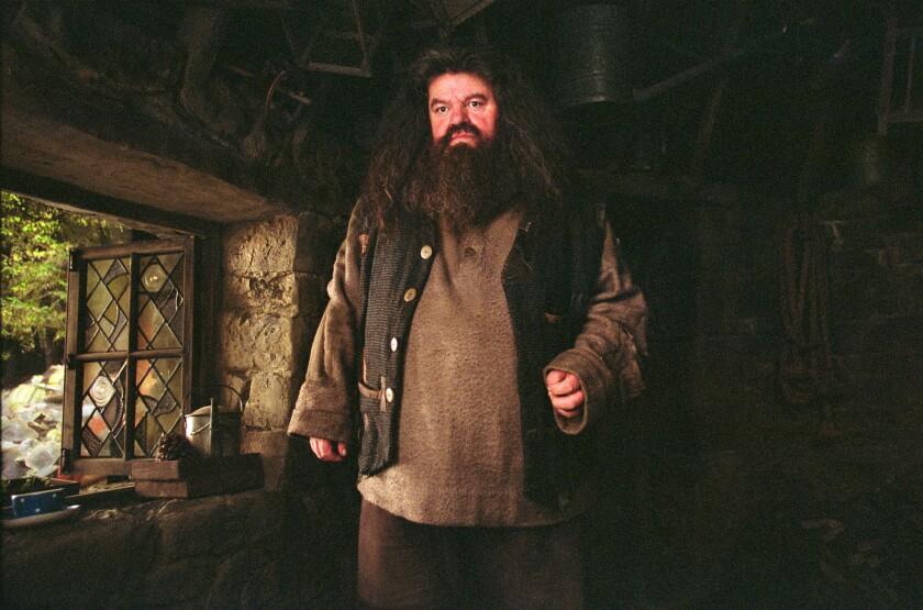 "Hagrid (Robbie Coltrane) in ""Harry Potter and the Prisoner of Azkaban."""