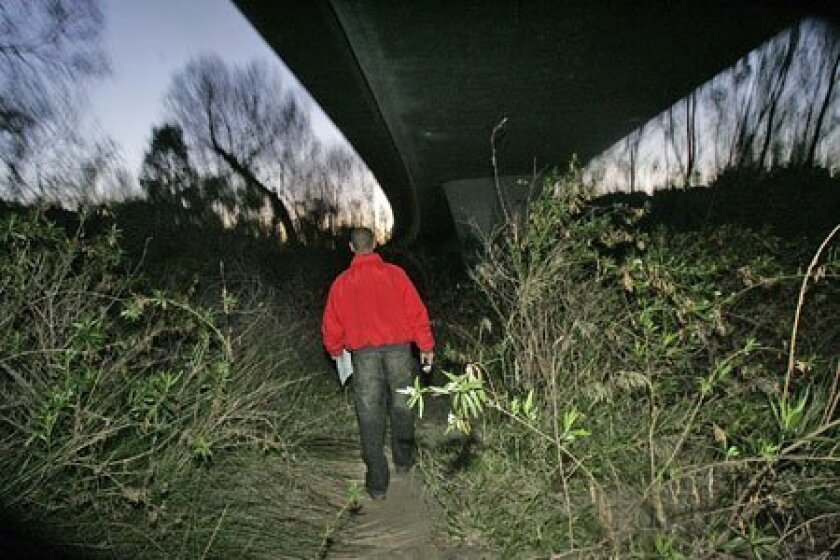 Walt Sandford, executive director of the Regional Task Force on Homelessness, searched an area near the San Diego River for homeless people just before dawn yesterday. His efforts were part of an annual count of the homeless, which helps local groups qualify for aid. (John Gibbins / Union-Tribune)