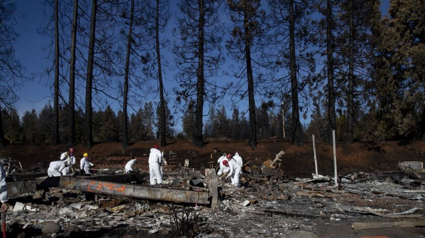 Amid a backdrop of charred pine trees, search and rescue teams from Butte County sift through the burned Ridgewood mobile home park in Paradise, Calif., on Nov. 25/