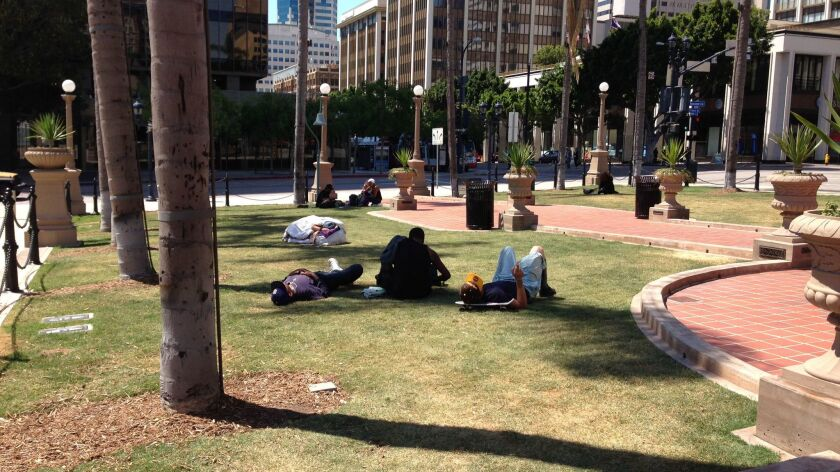One suggestion for activating historic Horton Plaza park is to make some of the lawn into a dog park