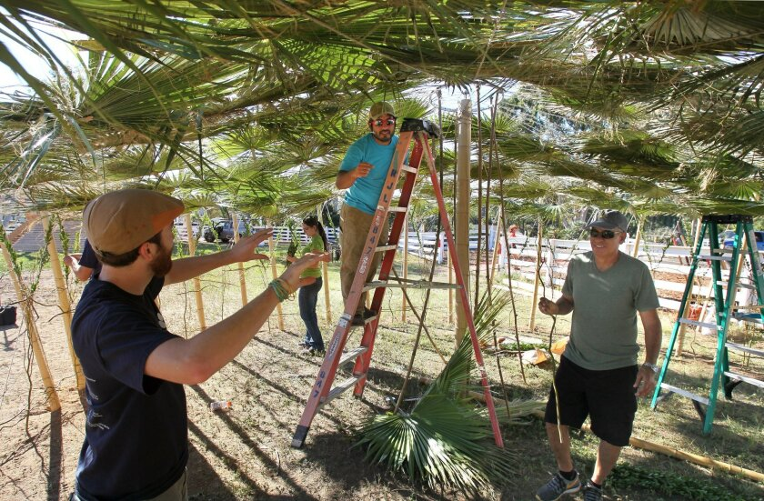 """Yoshi Silverstein, middle on ladder, gives instructions to volunteer assistants Morris Panitz, at left, and Yossi Havusha, at right, as they work on Yoshi's Sukkah design titled, """"Tension Release."""""""