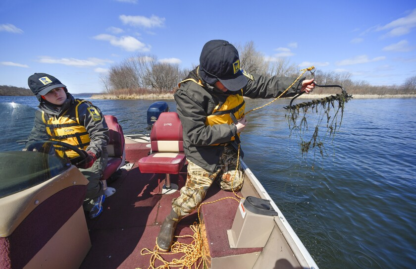 In this April 4, 2016 photo, Courtney Millaway, DNR natural resources specialist, left, pilots the boat for Chris Jurek, DNR aquatic invasive species specialist, as she collects samples of starry stonewort in Lake Koronis near Paynesville, Minn. The aquatic weed is creeping across the Great Lakes region and forms dense mats in lakes.