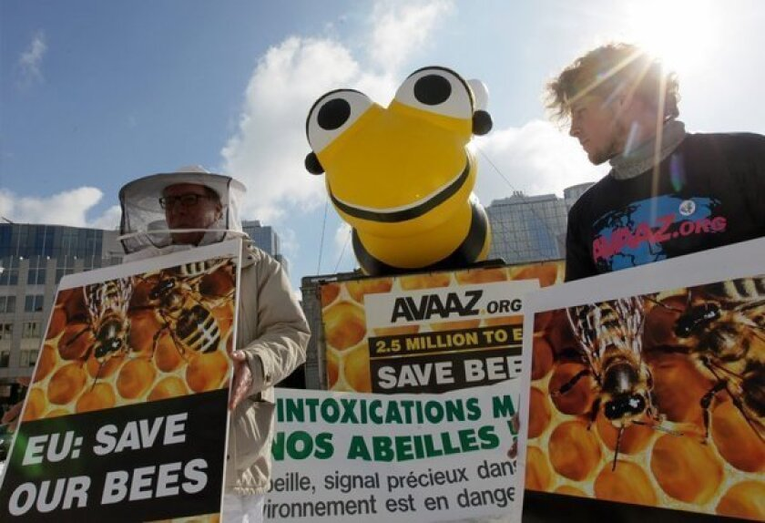 Activists and bee farmers take part in a rally calling on the European Union to ban the use of bee poisons and other pesticides, in front of the European Parliament, in Brussels, Belgium.