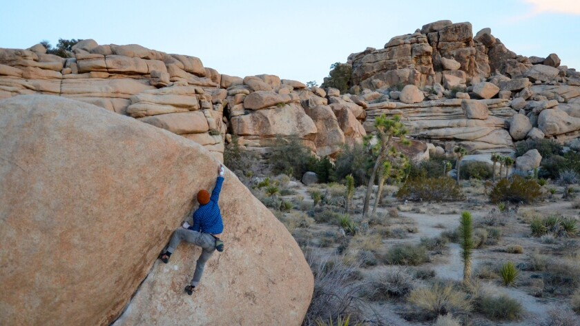 Bouldering opportunities abound along the Barker Dam Nature Trail in Joshua Tree National Park.