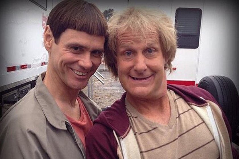 Dumb and Dumber Hulu: 15 Best Movies To Stream In July