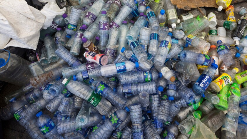 Plastic bottles collected from the water by volunteers in Aberdeen Harbor on the south side of Hong Kong Island in August.