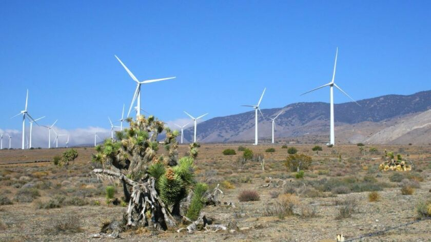 Developers of the Tule Wind Project received approval to build a second phase of the plan. Pictured is the Manzana wind farm in Kern County, operated by Avangrid Renewables, which runs the Tule project.
