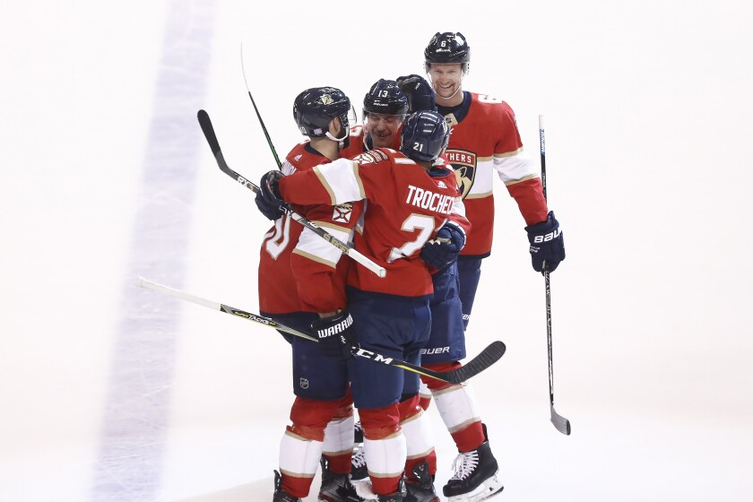 Ducks Panthers Hockey