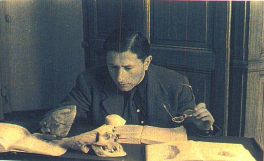 The future Dr. William Z. Good, then known as Wowka Zev Gdud, studies anatomy in Turin, Italy, after World War II.