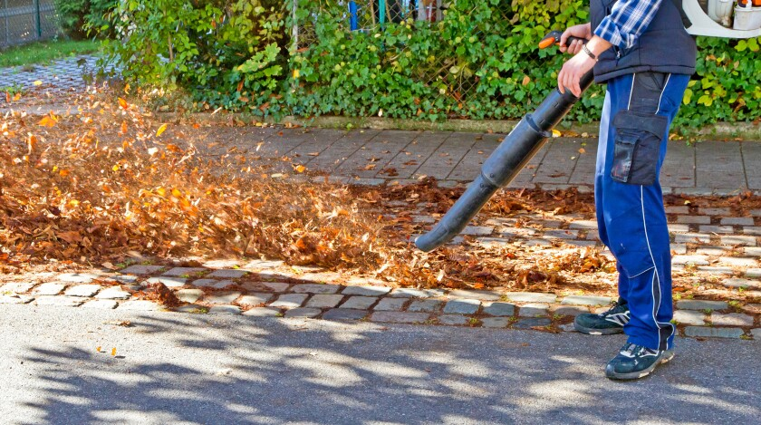 Earth Talk:Will gas-powered leafblowers be outlawed?