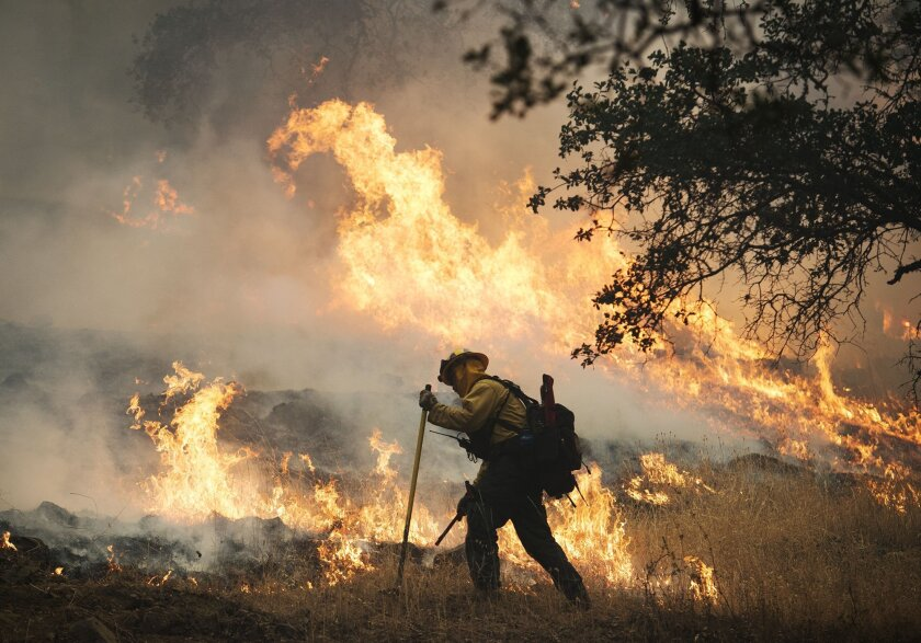 A firefighter lights a back burn along Highway 29 north of Middletown, Calif., Sunday, Sept. 13, 2015. Two of California's fastest-burning wildfires in decades overtook at several Northern California towns, destroying over a hundred homes and sending residents fleeing Sunday. (Randy Pench/The Sacra