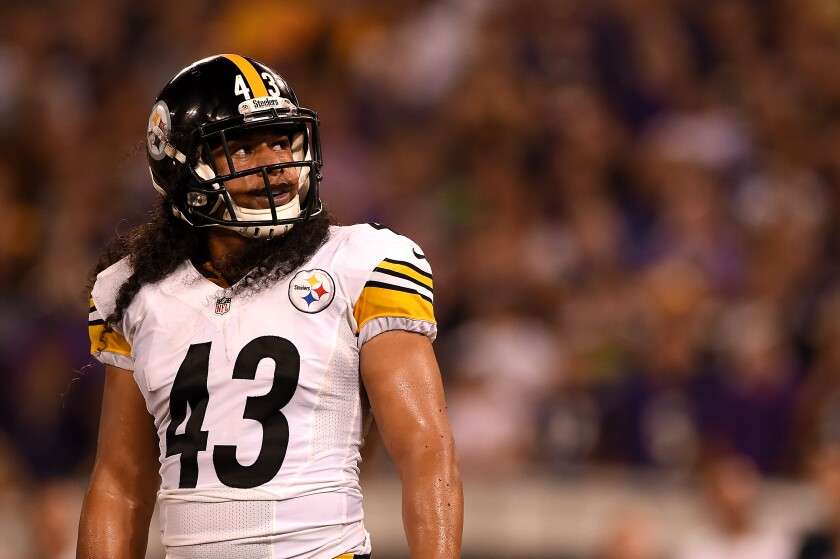 Steelers safety Troy Polamalu looks on during the fourth quarter of a game against the Ravens on Sept. 11, 2014.