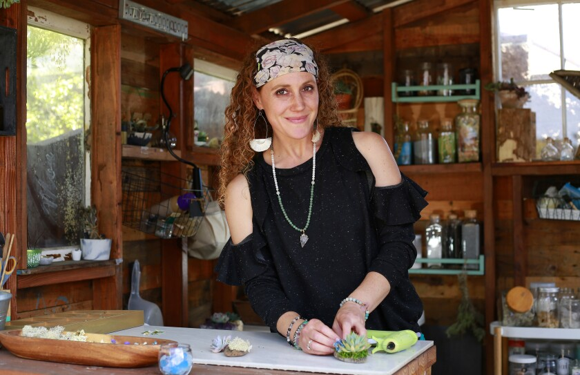 Rachael Cohen, here in her backyard workshop, is the owner of Infinite Succulent and has written a book by the same name.