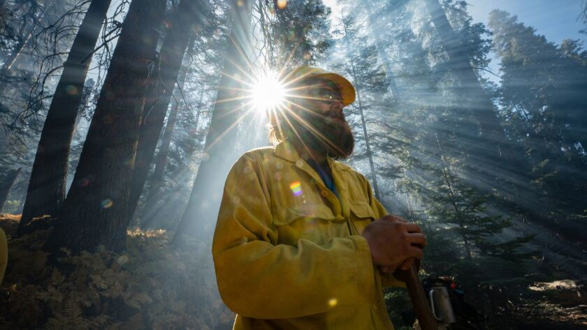 SEQUOIA NATIONAL PARK, CA OCTBER 20, 2018 -- Firefighter Dave Purcell from the Golden Gate Fire Depa