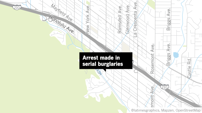 Suspect nabbed in serial vehicle burglaries from January