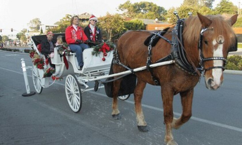 """""""Jed"""" offered carriage rides in front of Bully's Del Mar"""