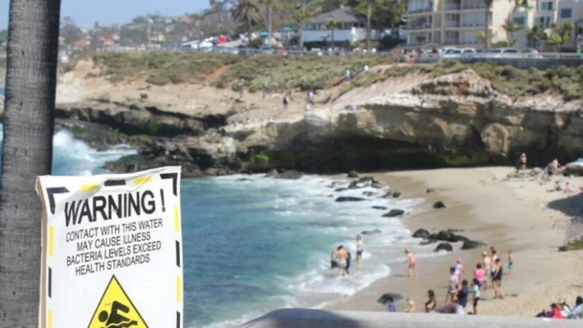 Beach-goers enter The Cove waters despite signs of high bacteria posted by authorities in August 201